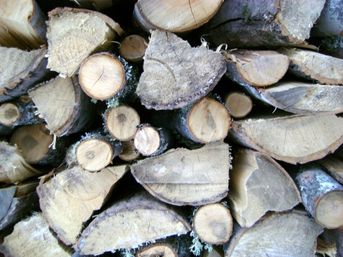 Who's the counting the logs left in the woodpile?