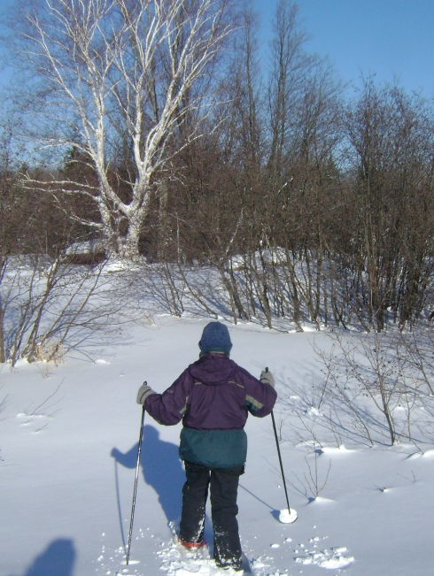 Catherine snowshoeing ahead (with poles)