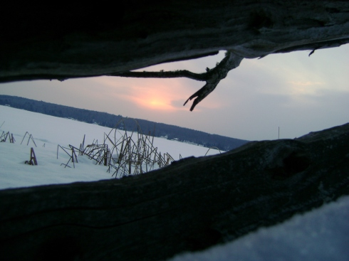 Let's capture the sunrise through the cleft of a log