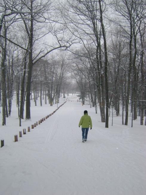 Bertha walks ahead along the trail