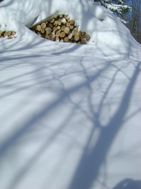 Shadows on the snow near the woodpile.  Look how much snow on the woodpile!
