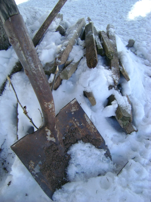 Garden shovel and stakes (for marking rows) sit ready in the snow