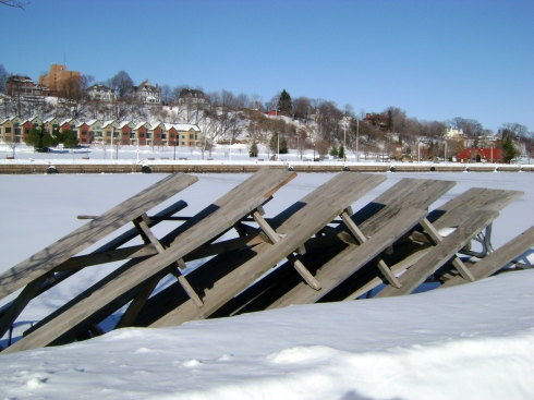 Picnic tables at the harbor
