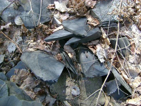 Slate rocks tossed helter-skelter in pile in woods