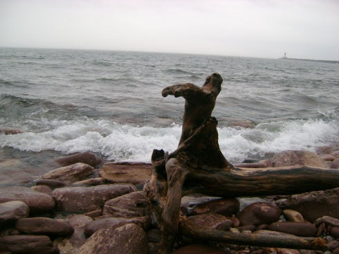 Driftwood and rocks against rushing lake waves
