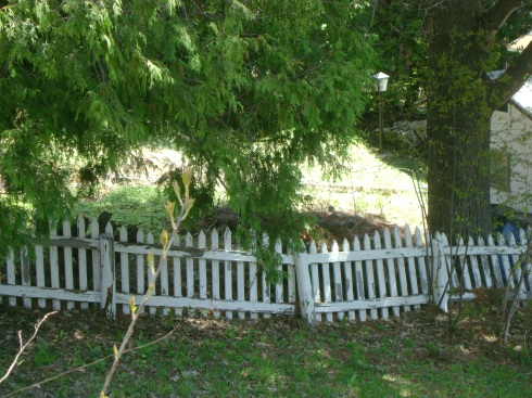 Cool picket fence