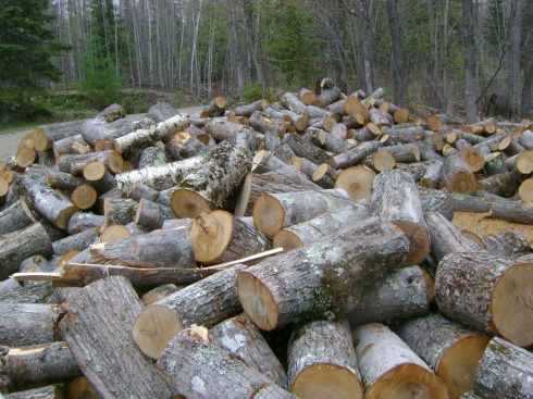 Oh look at all that wood we need to split...