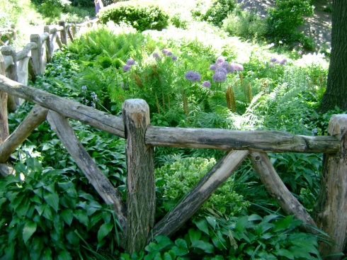 Fence & garden (Central Park)