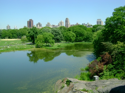 Central Park lake with skyscrapers on horizon