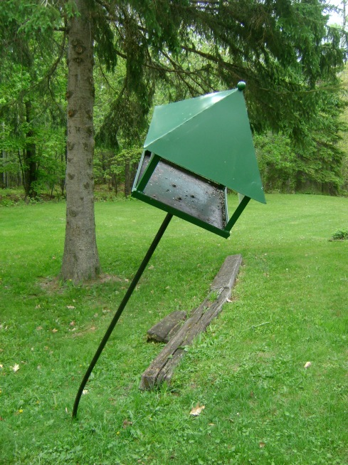 ooops, there goes the bird feeder