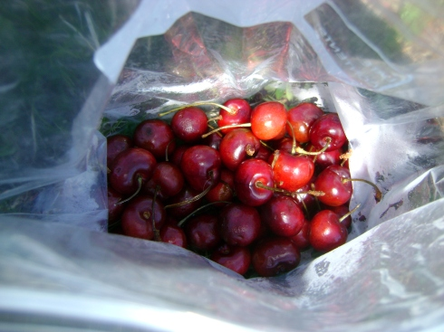 A bag of cherries