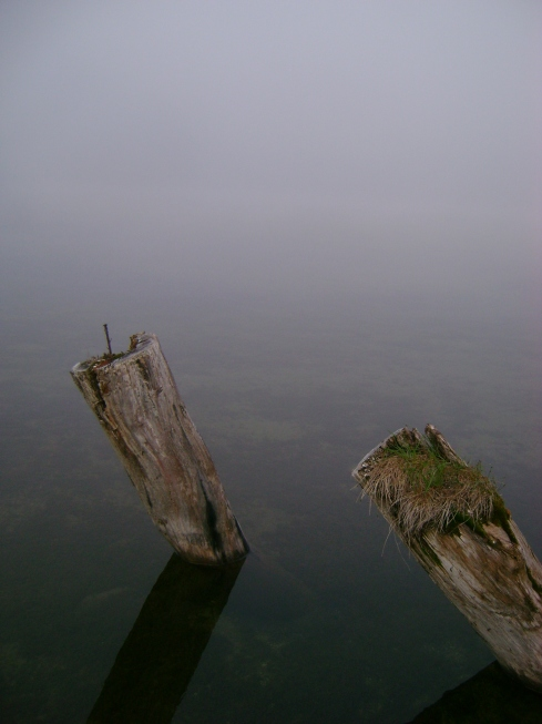 Fog on the lake this morning