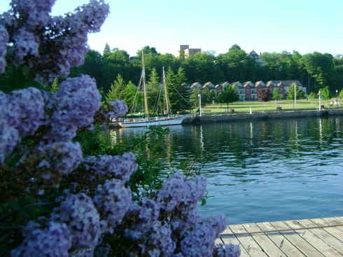 Lilacs and sailboat