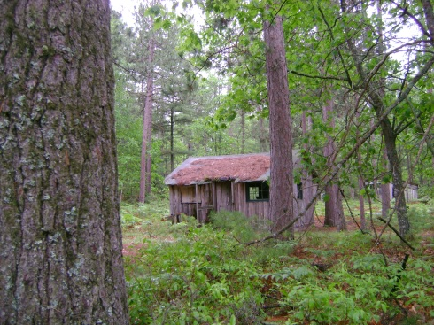 "Old ""Caretaker's Cabin"" on the property"