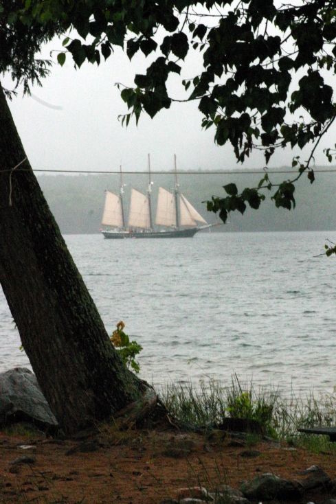 The Denis Sullivan Schooner (Barry's photo)