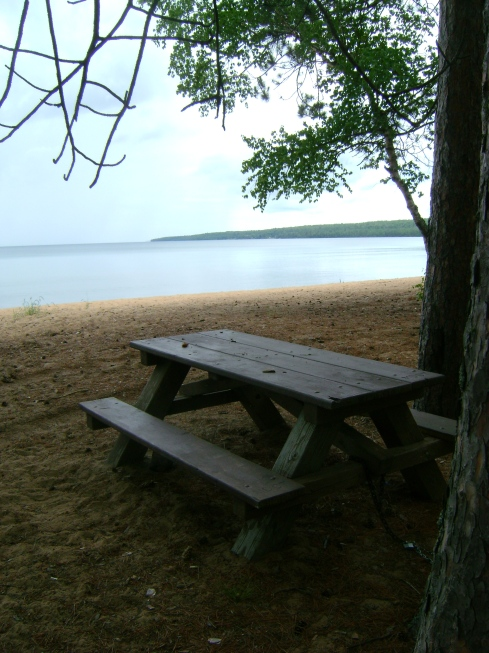 Lonely picnic table
