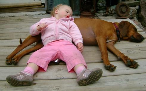 Kenzie just plopped briefly on her patient doggie