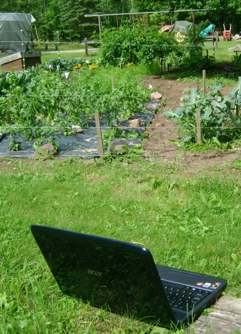 Laptop serenades the garden