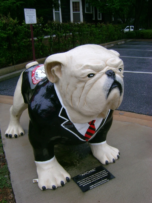 Bulldog in a dignifed suit and tie