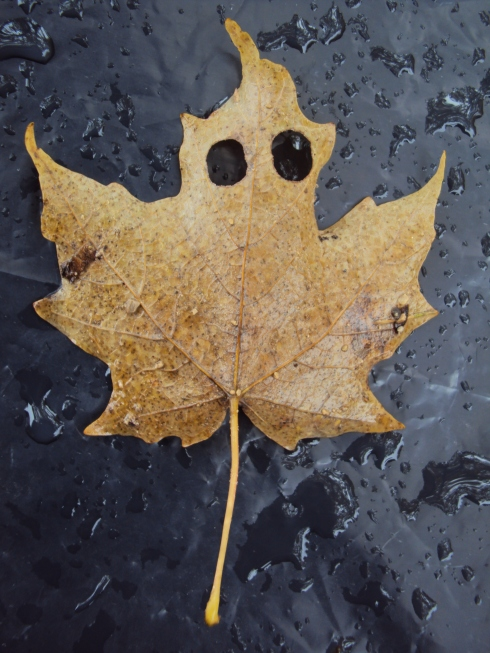 Scary leaf ghost