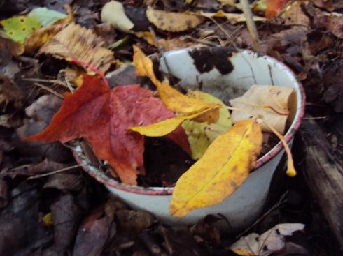 Leaf soup