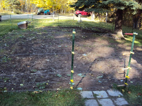 The empty garden.  Or should we say:  A garden full of dirt!