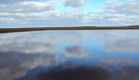 Sky in heavens and on earth (OK, reflected in a pond)