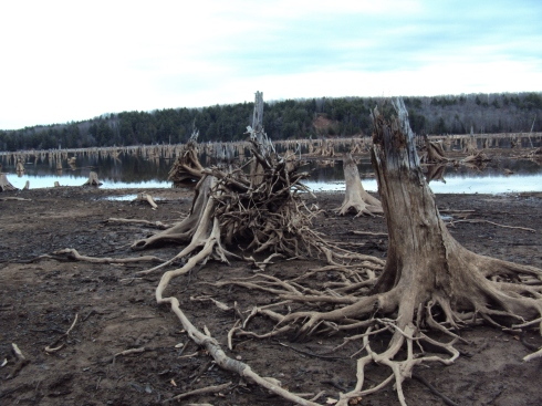 Prickett Dam