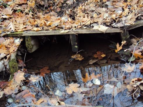 An ancient bridge across the ravine stream