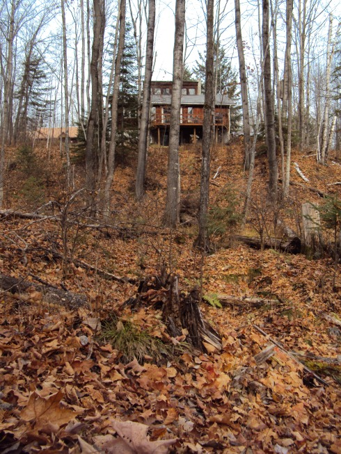 Our little house in the big woods--from the back, through the woods