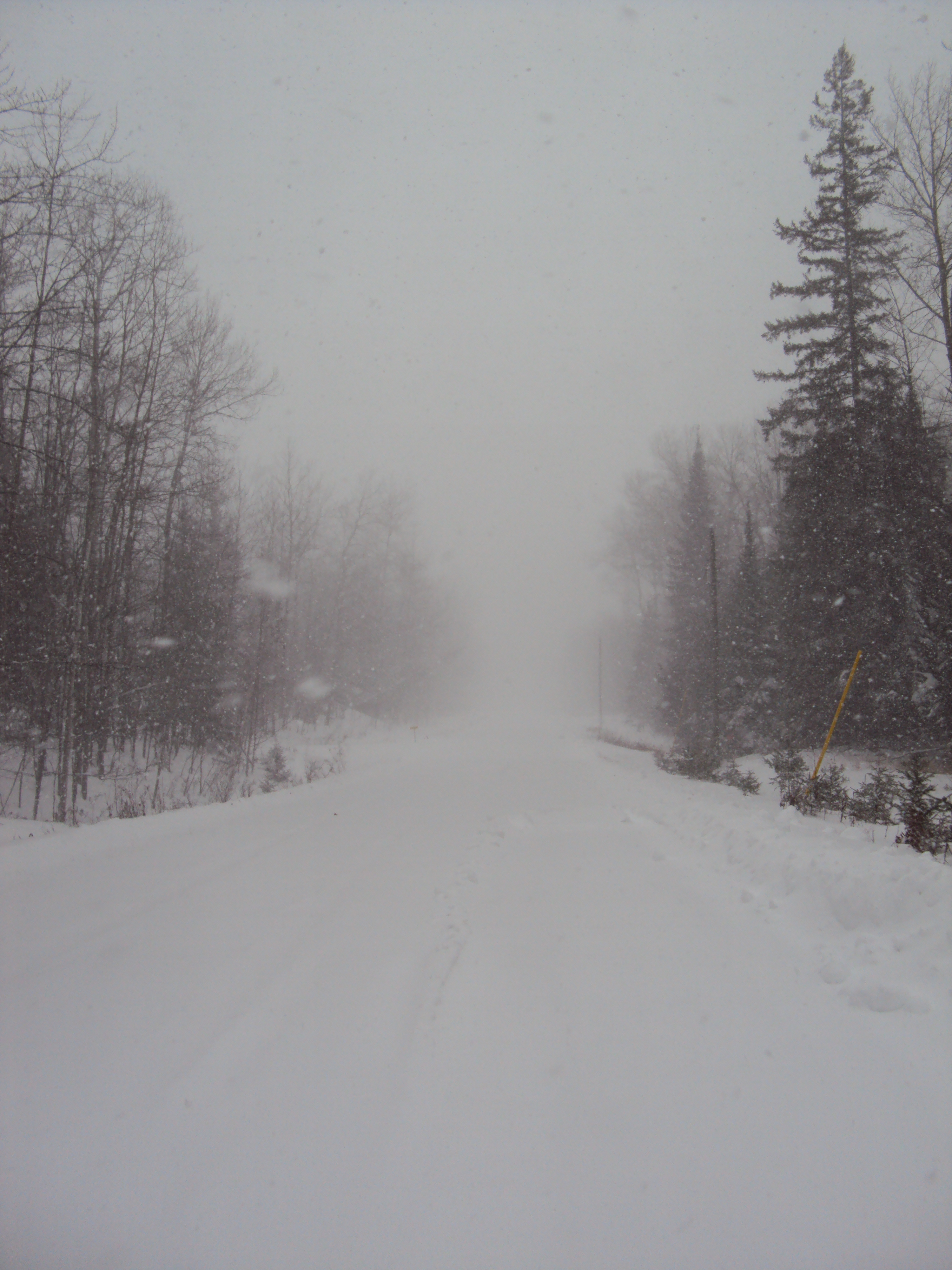 Blizzard!!   Opening the door, walking outside