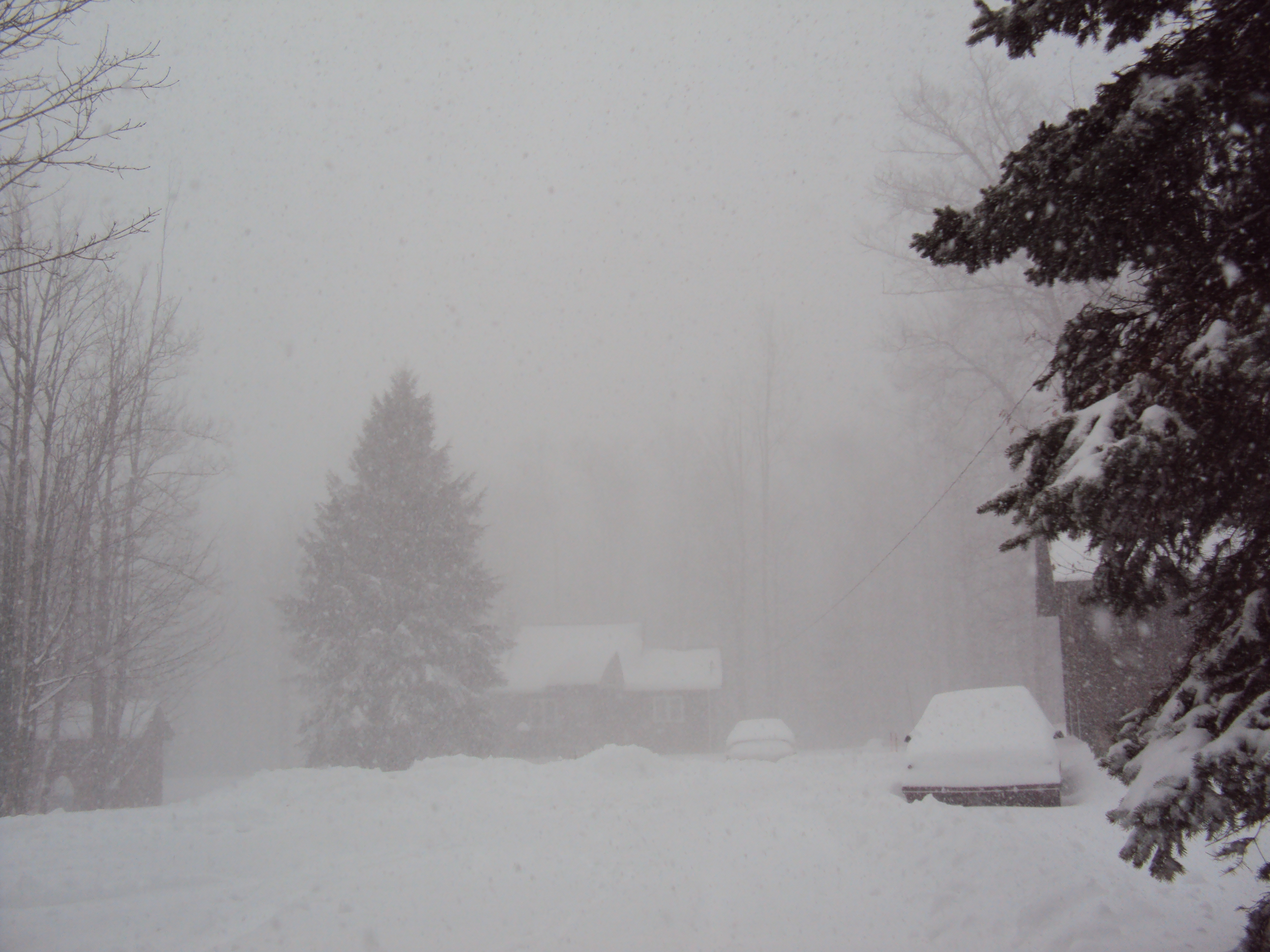 blizzard - photo #31